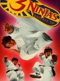 Les 3 ninjas se révoltent