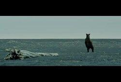 bande annonce de Terre des Ours
