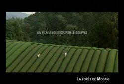 bande annonce de La Forêt de Mogari