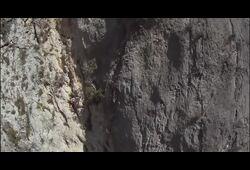 bande annonce de La Grotte des rêves perdus