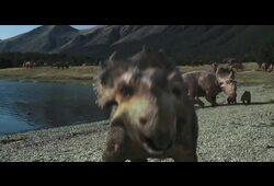 bande annonce de Sur la terre des dinosaures, le film 3D