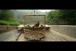 bande annonce de Le Promeneur D'oiseau