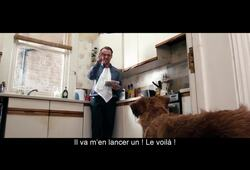 bande annonce de Absolutely Anything