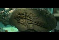 bande annonce de Piranha 3D