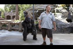 bande annonce de Zookeeper