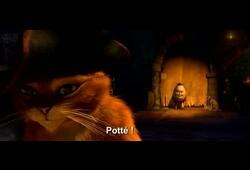 bande annonce de Le Chat Potté