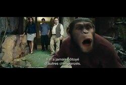bande annonce de La Planète des singes : les origines