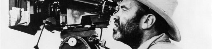 Un réalisateur : Terrence Malick