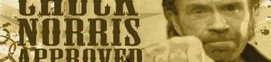 Chuck Norris, mon Top 10
