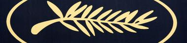 Palmes d'or vues