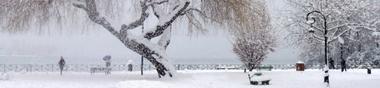 Je voudrais un Bonhomme de Neige