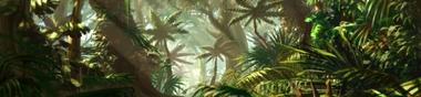 Dans la jungle, terrible jungle...