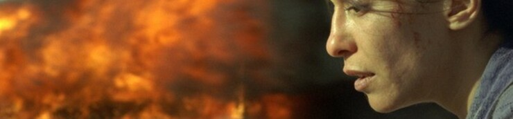 Vu au cinéma : Janvier 2011