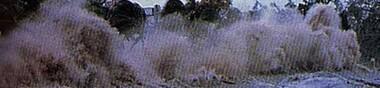 top dix 2004